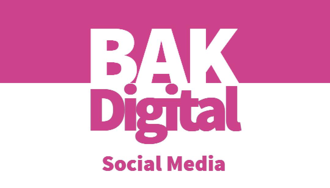 BAKDigital pay per click