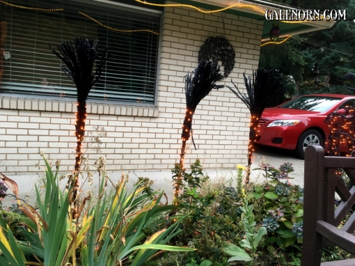 My lovely black witching brooms!