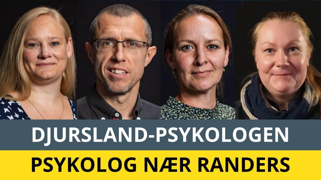 Djursland-psykologen nær Randers - Stine L, Frank, Malene og Stine C