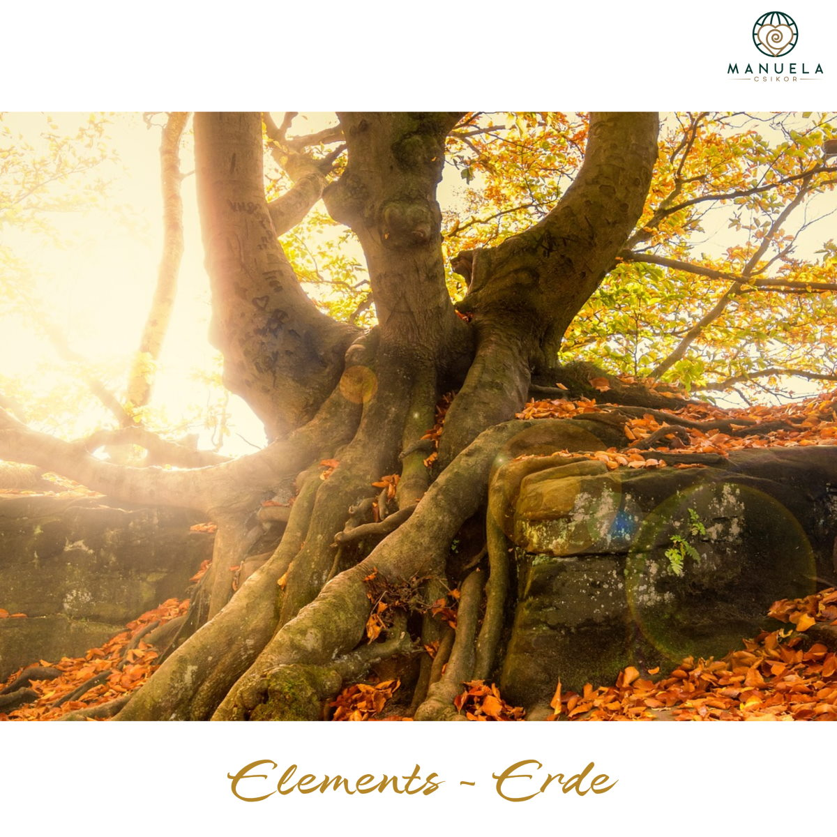 Elements - ERDE - ein Selbsterfahrungsabenteuer