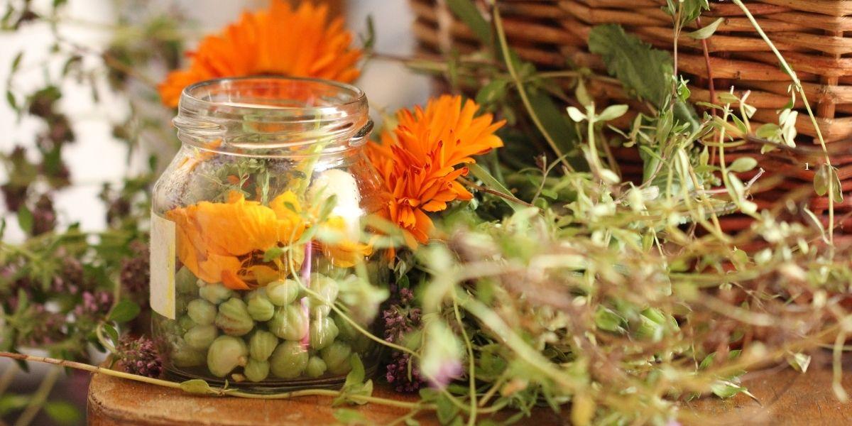 fermentace v medu