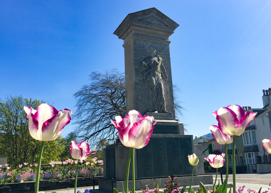 April Tulips at the Cenotaph. Credit: Paul Roper
