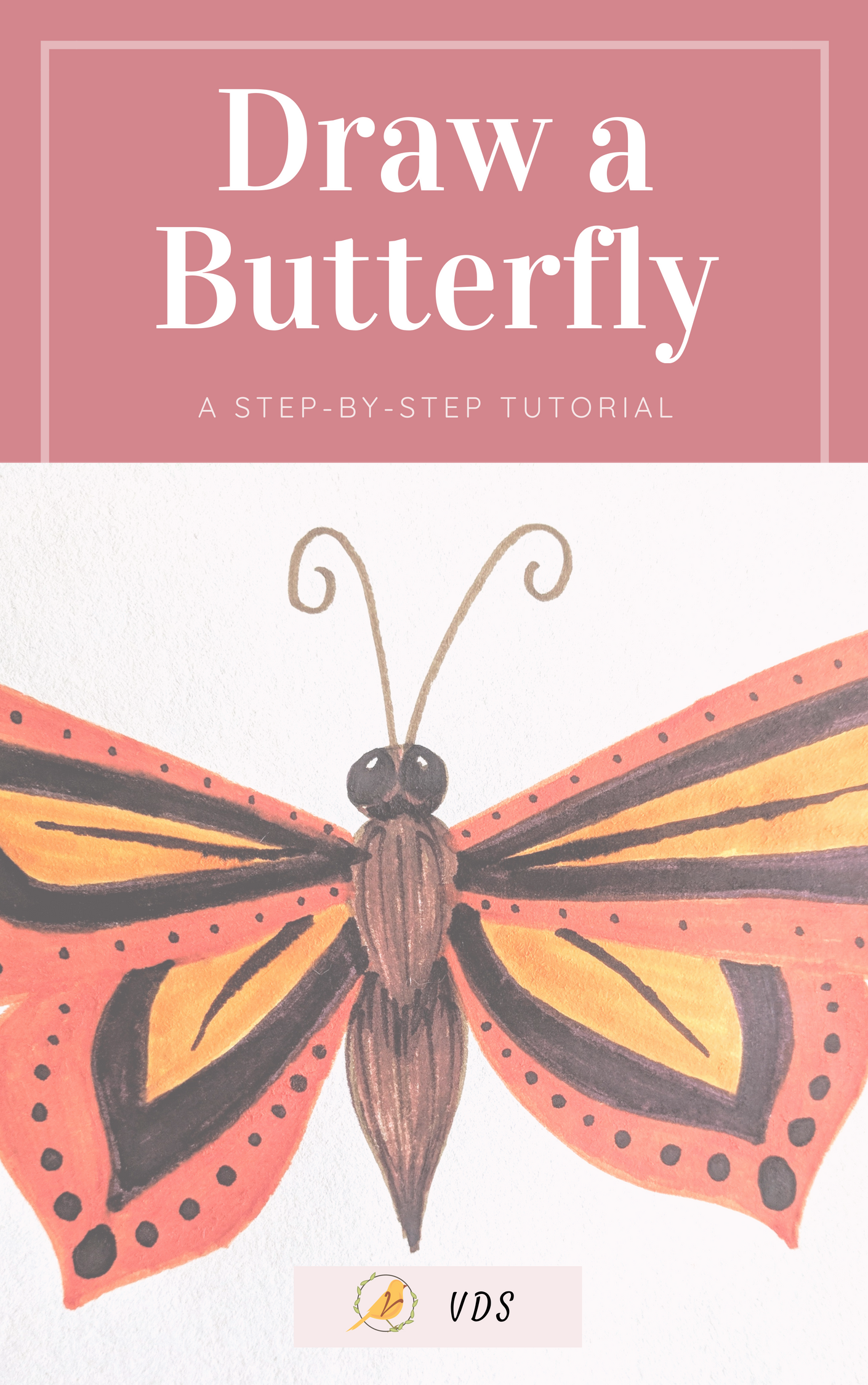 Draw a Butterfly Free Illustration Tutorial