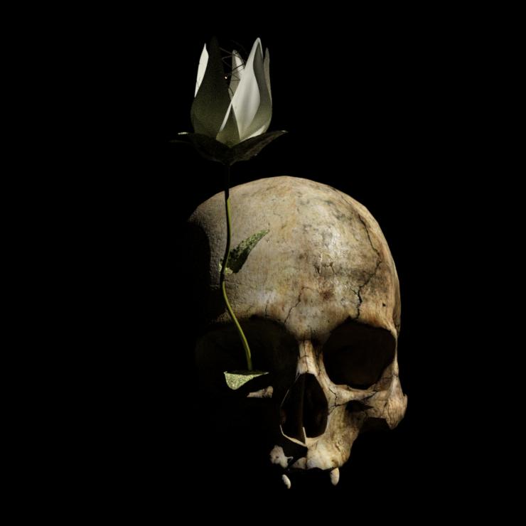 Logo crâne et fleur