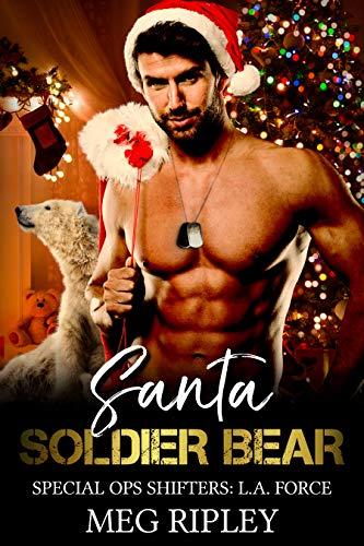 Santa Soldier Bear