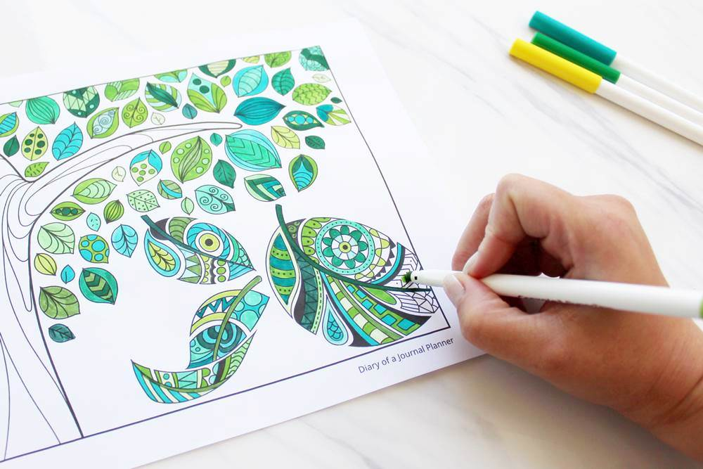 Download Your FREE Mindfulness Colouring Book Pdf