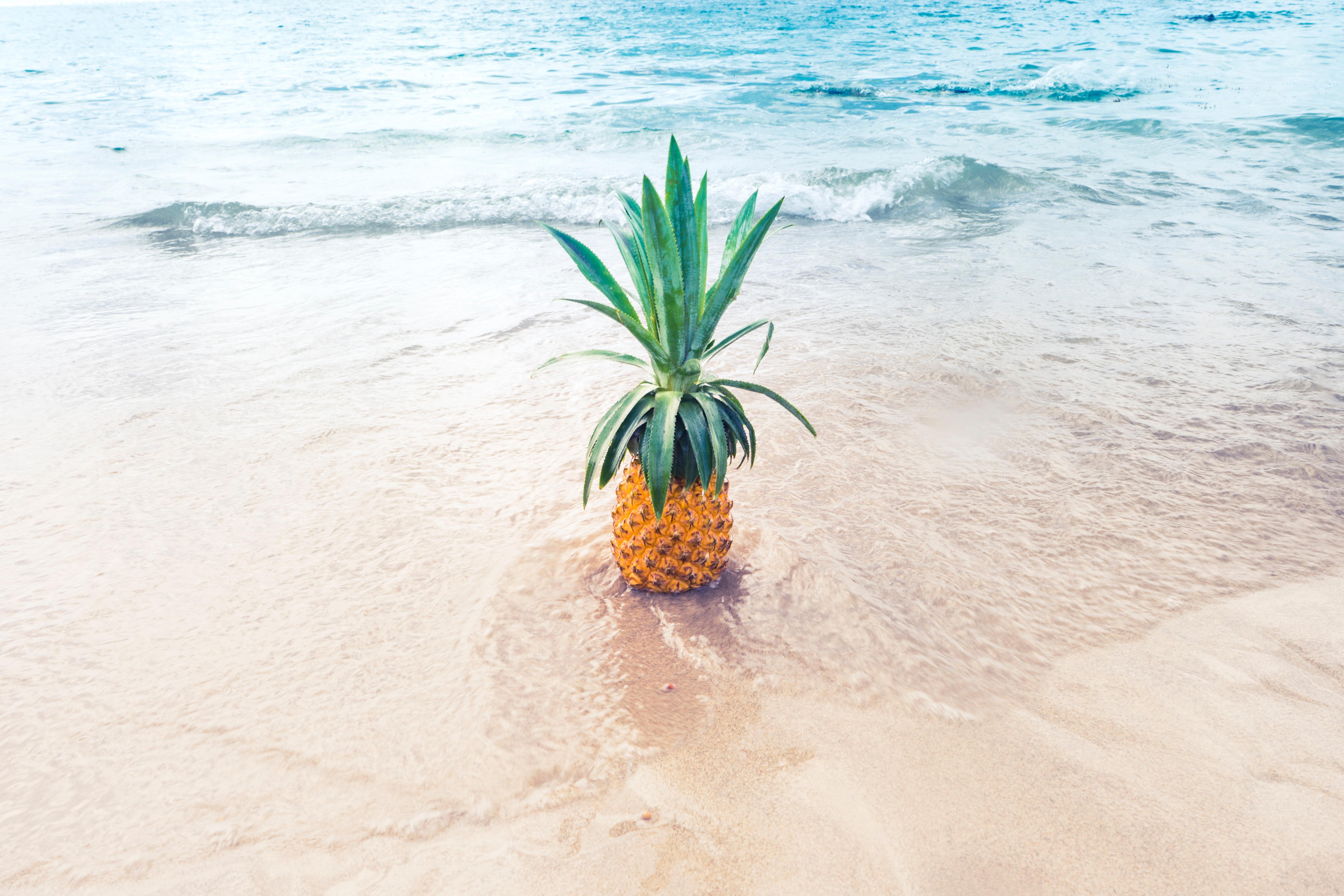 Eine glückliche Ananas am Strand