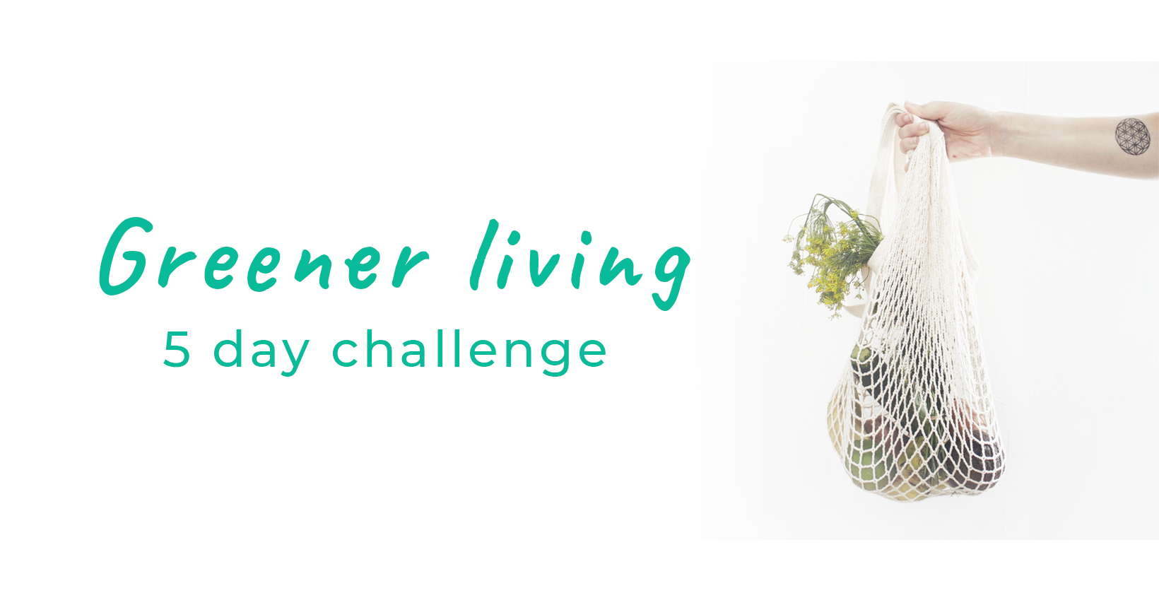 Greener living 5 day challenge
