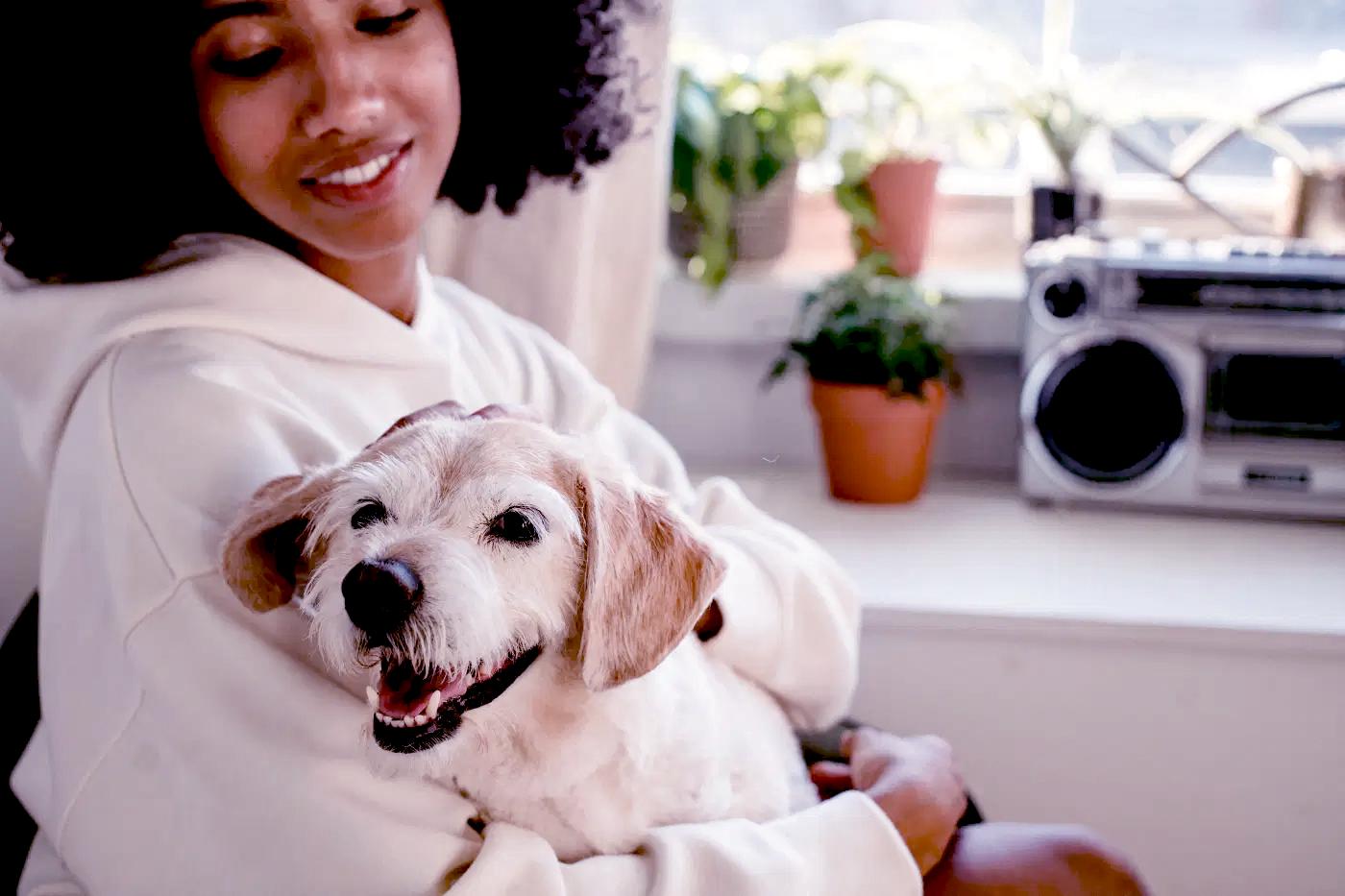 Você sabe se o seu Pet é feliz?