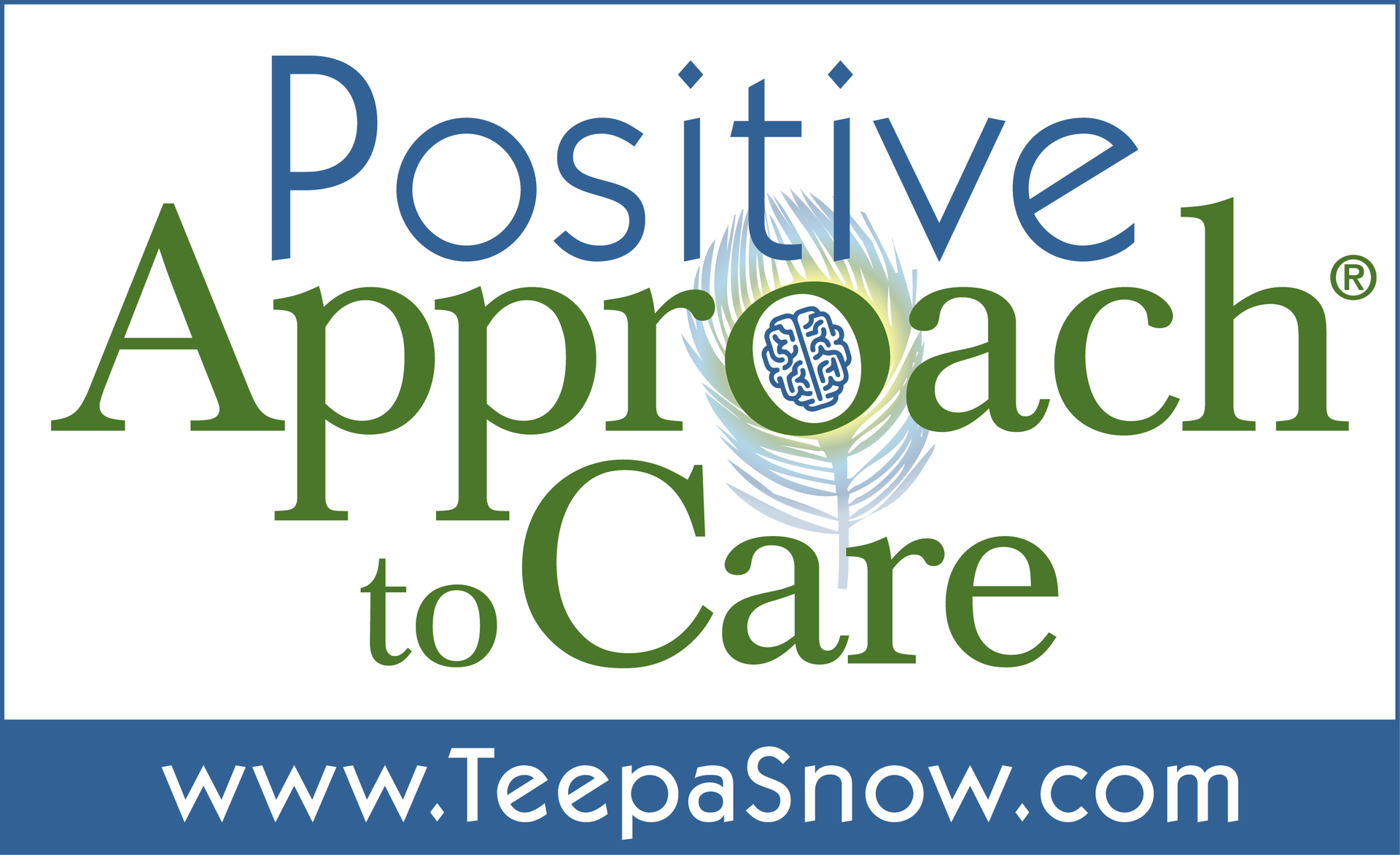 positive approach to care teepa snow