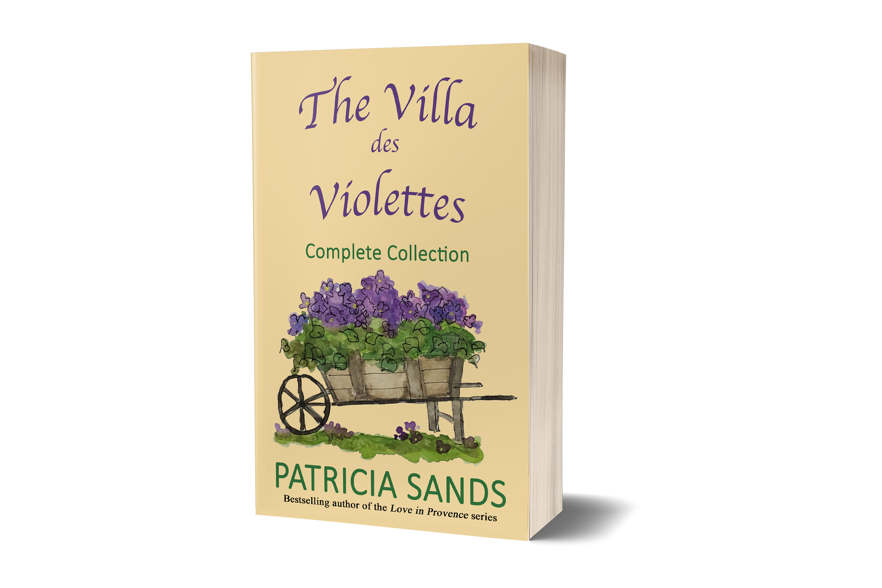 The Villa de Violettes
