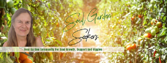 Winter Solstice Soul Garden Seekers