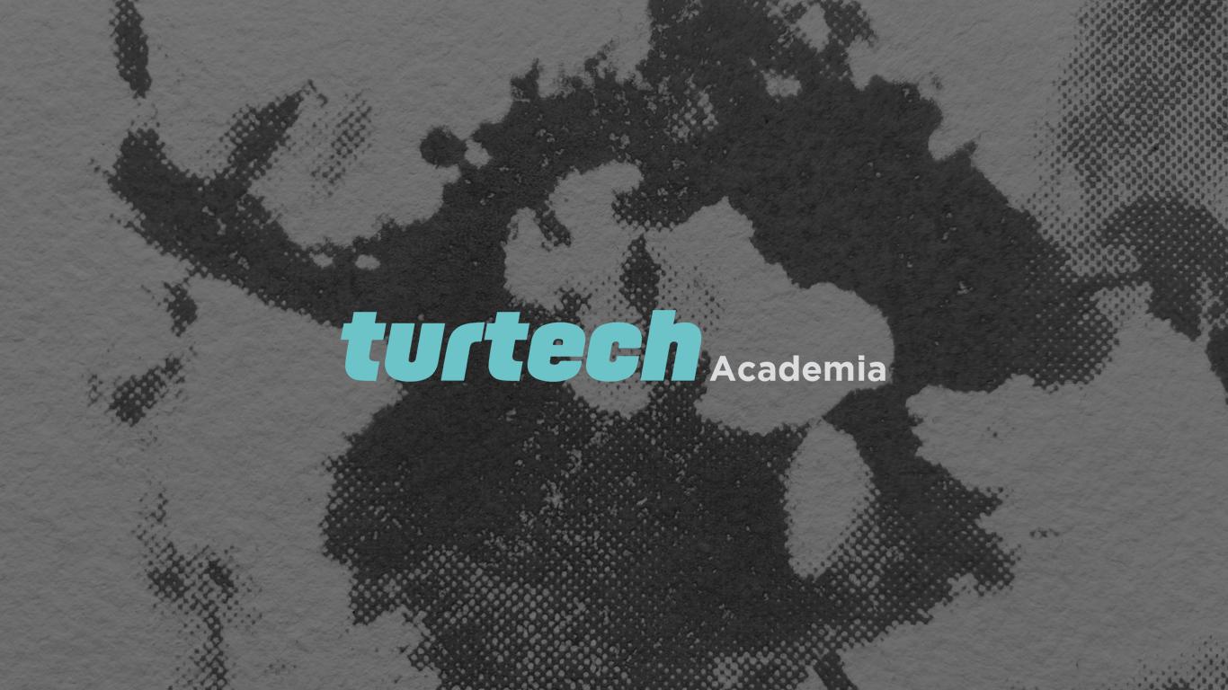 Academia turtech