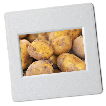 patatten