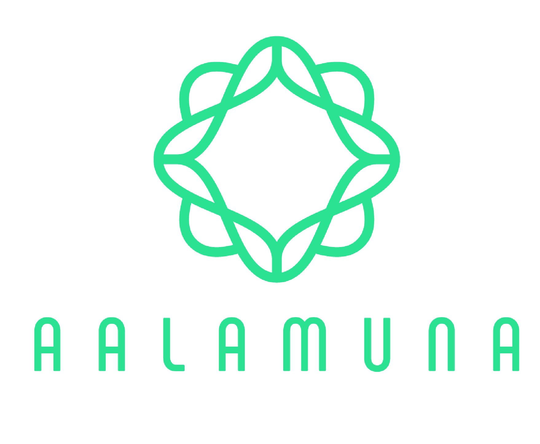 Aalamuna concet store objets du monde