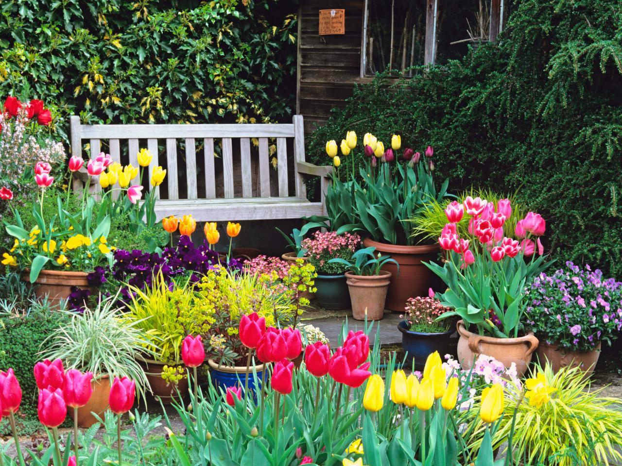 Colorful Garden via www.FlowerChick.com