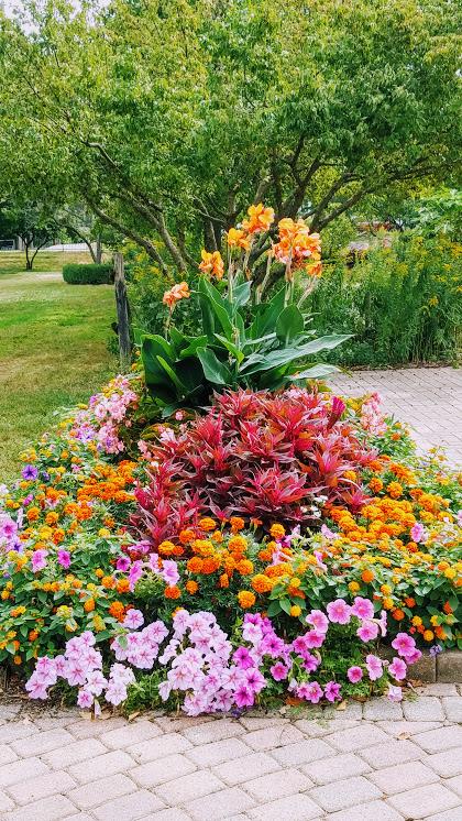 Containers of Vinca, Begonias, New Guinea Impatiens, and Geraniums by FlowerChick.com