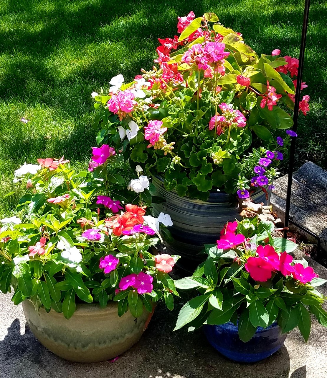 Containers of Vinca, Begonias, New Guinea Impatiens, and Geraniums by FlowerChick.com