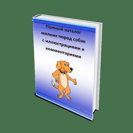 Каталог мелких пород собак