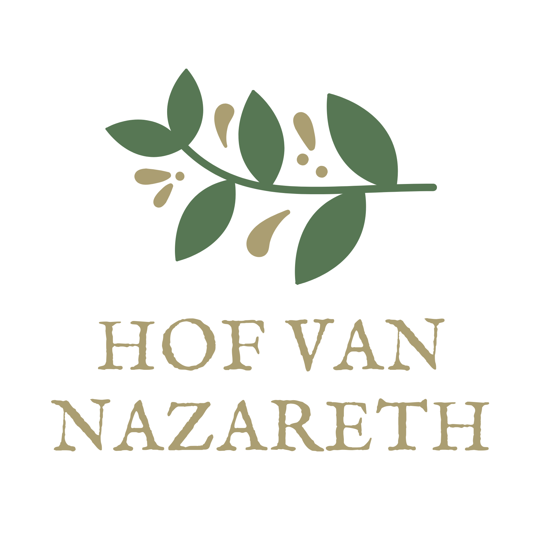 hof van nazareth, dé feestzaal van lier