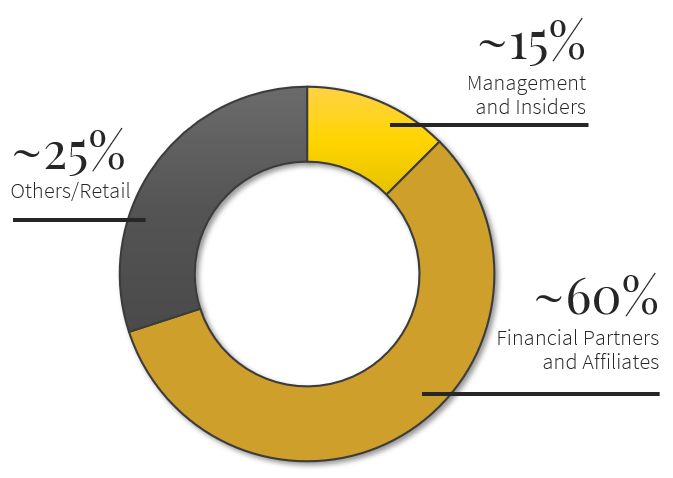 Carlyle Commodities Corp. Shareholder Breakdown Pie Chart