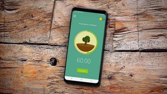 App Forest Cover
