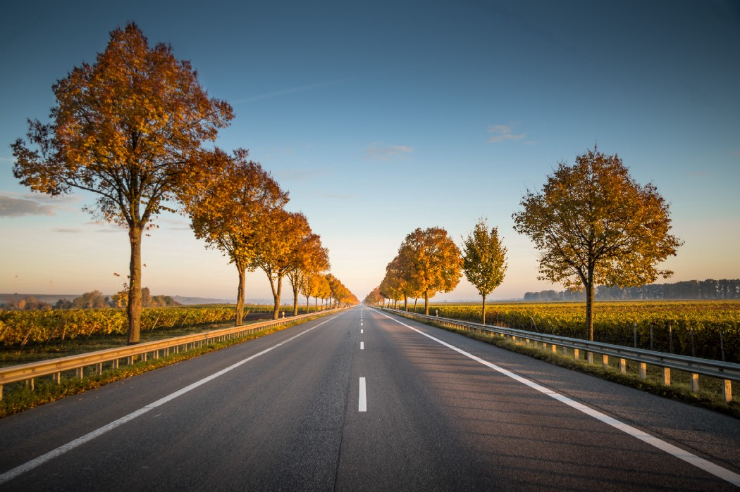 Where is your product heading? - Roadmaps