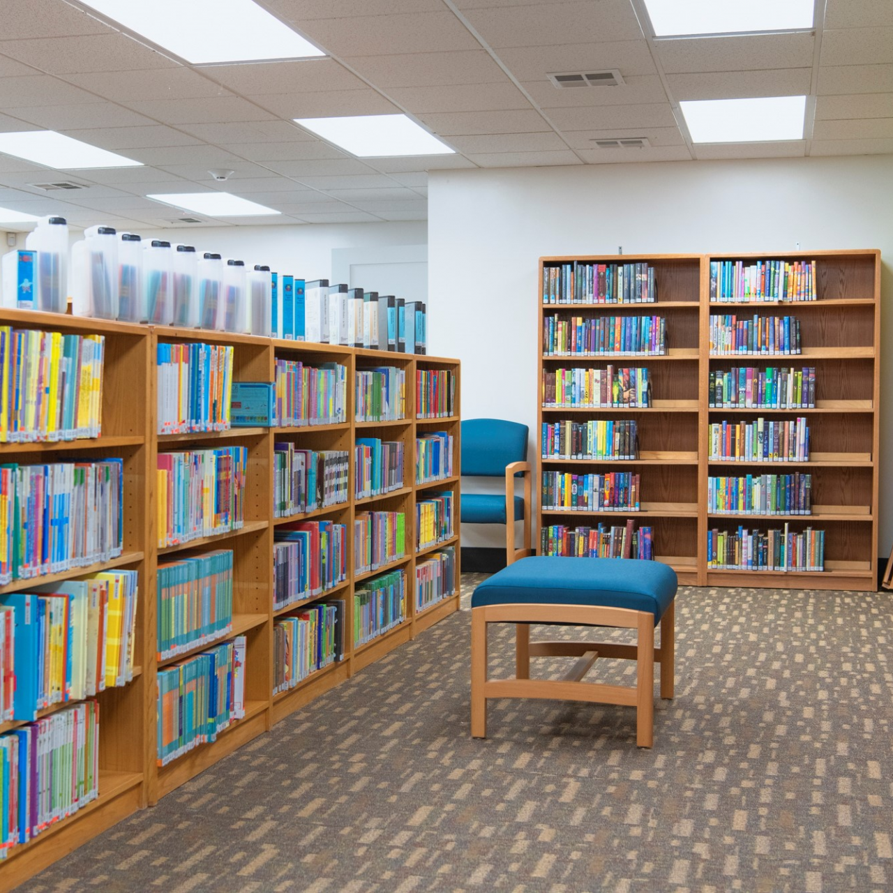 shelves of books and blue upholstered furniture