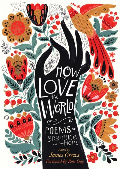 How to Love the World book cover
