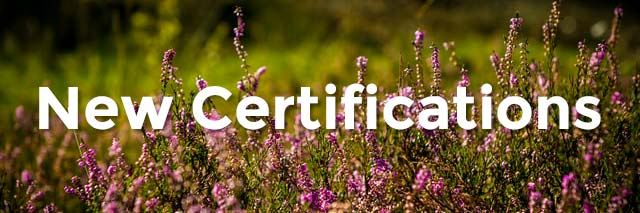 the word New Certifications in front of a field of purple flowers