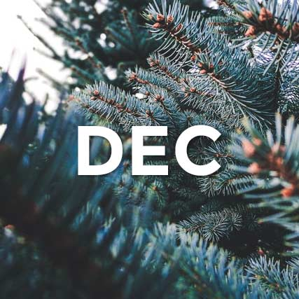 The word December in front of pine branches