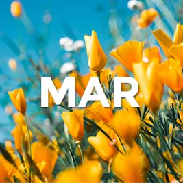 the word March in front of a field with flowers
