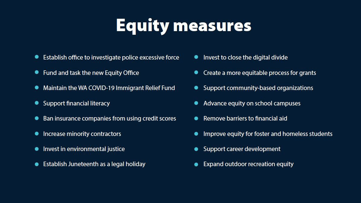 dark blue graphic with the headline equity measures