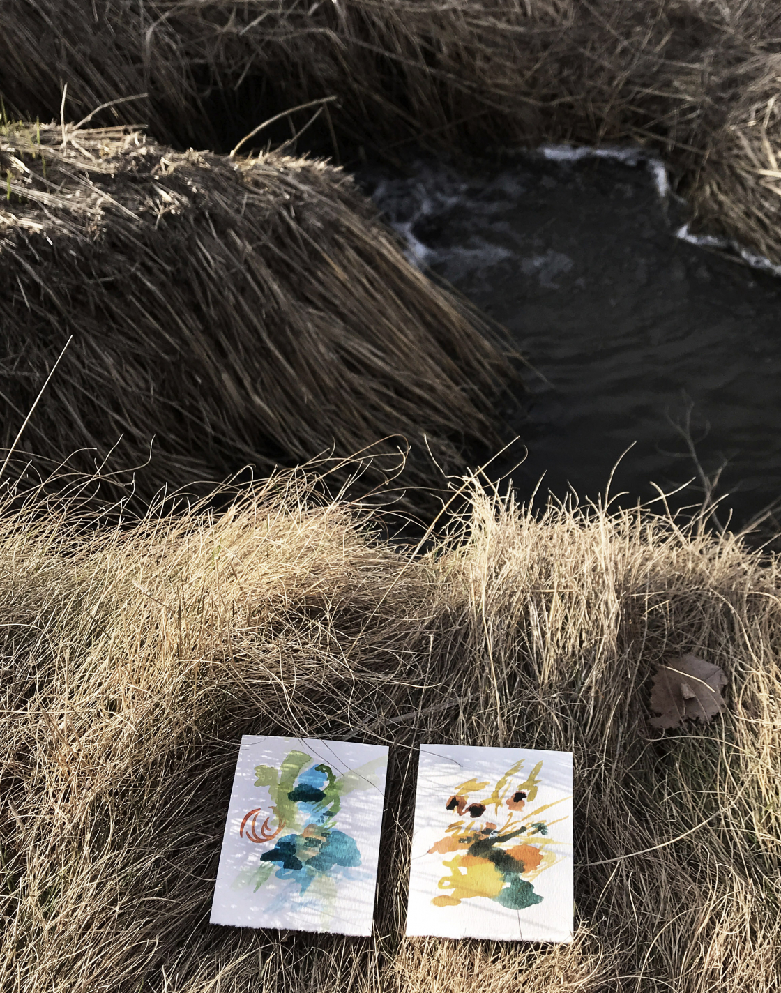 Paintings on a river bank Moscow Idaho DJ Lee