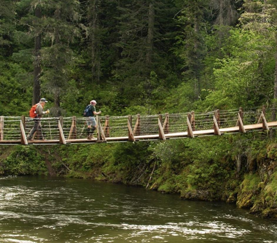 Two people walking across a suspension bridge St. Joe National Forest