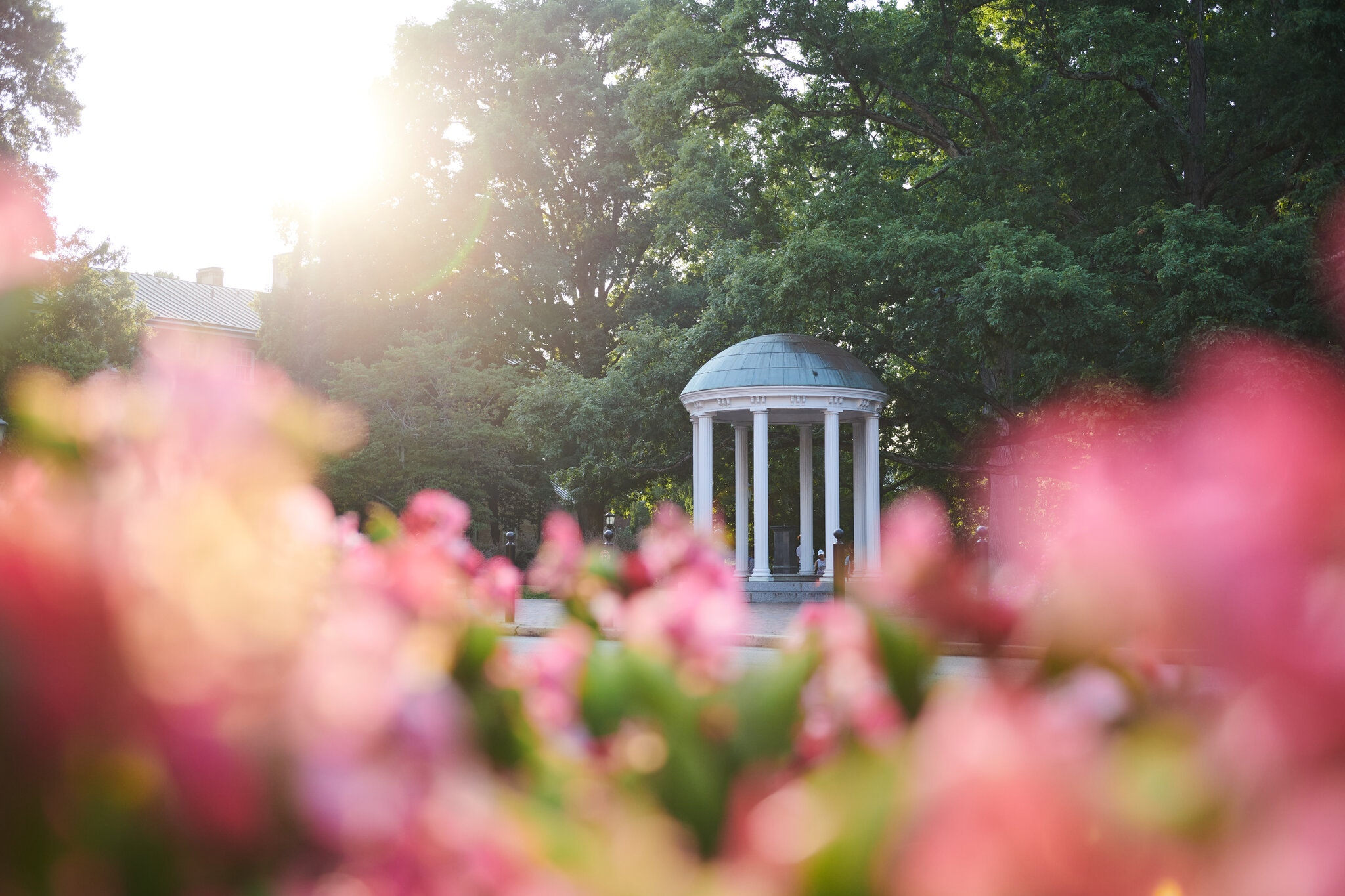 The Old Well in Chapel Hill, Lauren Vied Allen for The New York Times