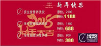 Special offer for Chinese New Year