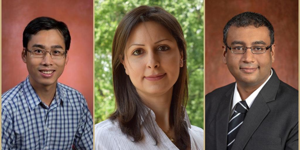 FSU early career researchers receive prestigious NSF award