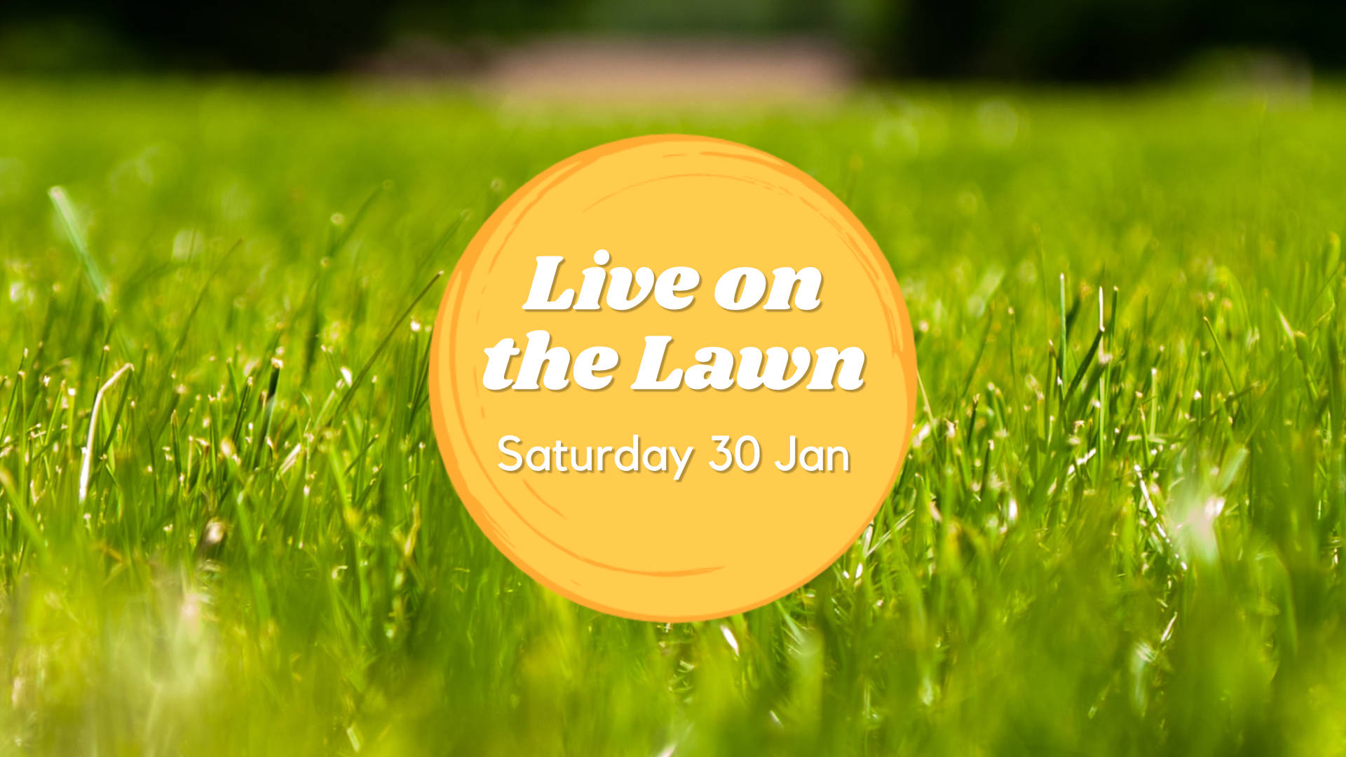 Live on the Lawn Saturday 30 Jan