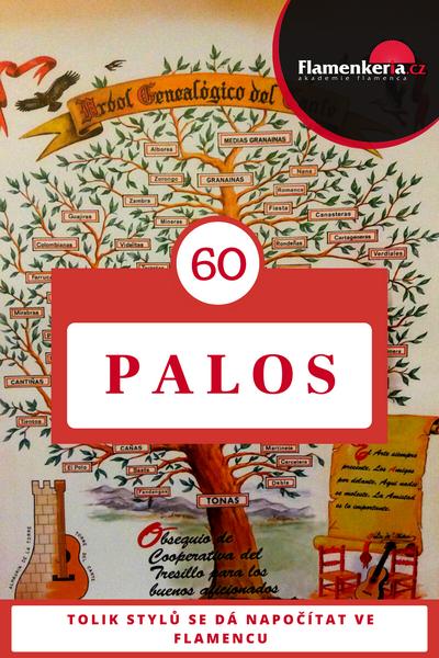 60 různých stylu existuje ve flamencové hudbě