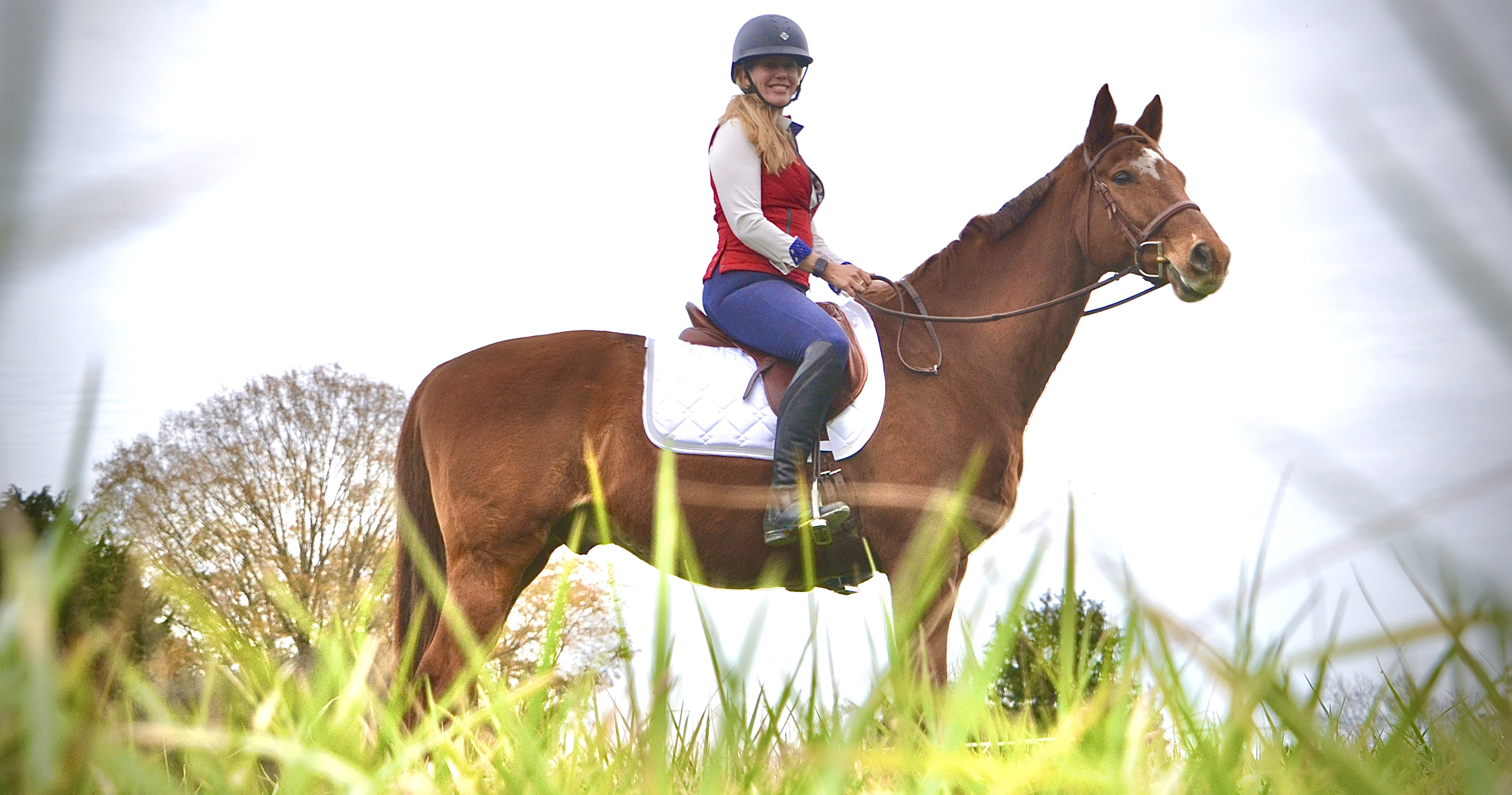 A photograph of me on Leroy, a large chestnut gelding, while he stands looking off into the distance.