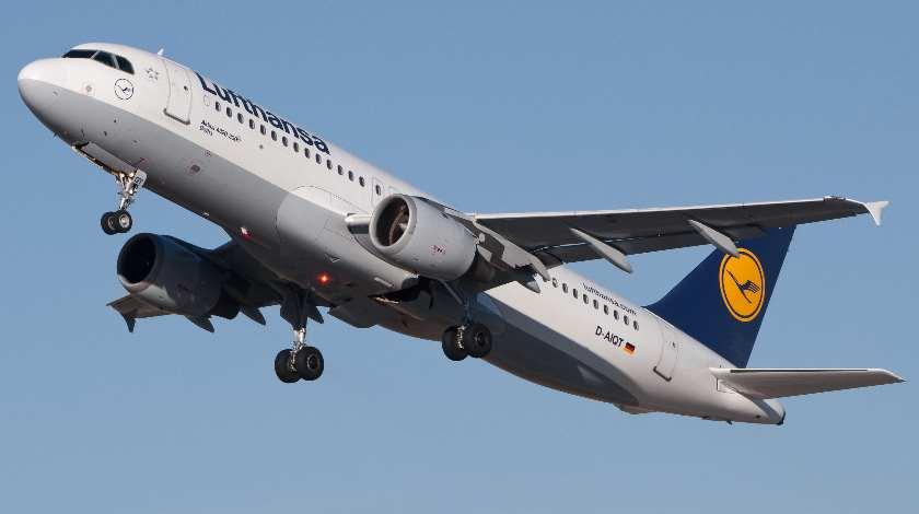 Lufthansa Airbus A320 Receives a Bird Strike