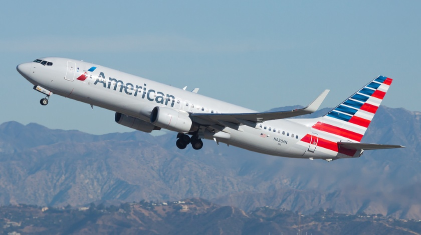 American Airlines Boeing 737 Experiences Bird Strike