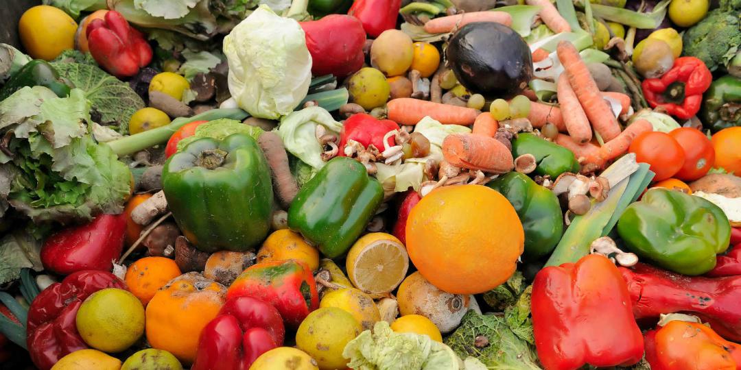 Durabilité alimentaire : la France toujours leader mondial