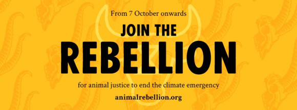 Animal Rebellion poster