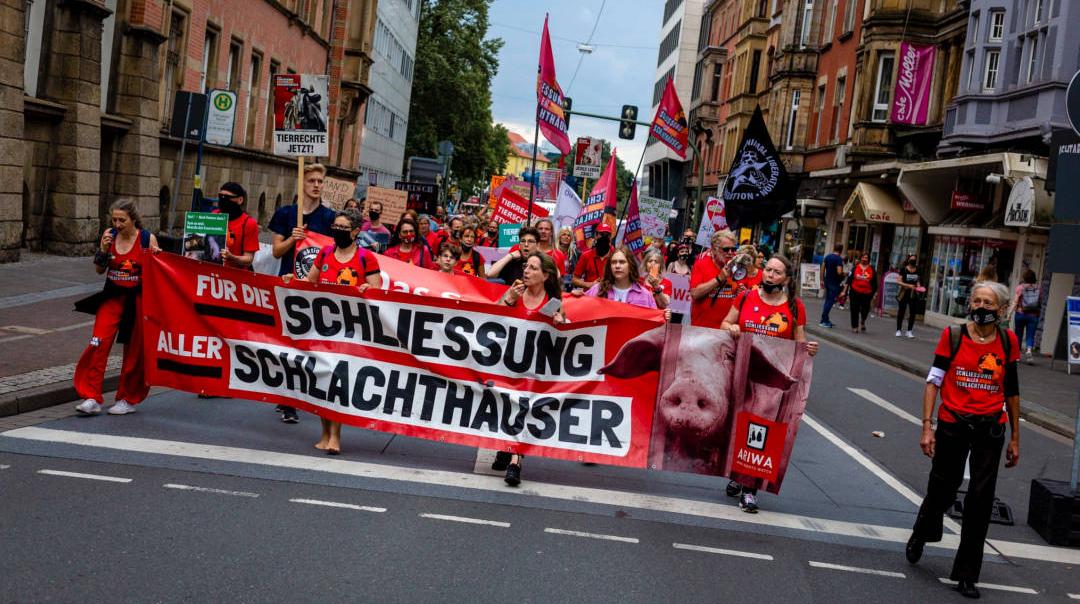 Foto: Demonstrationen für die Schließung aller Schlachthäuser