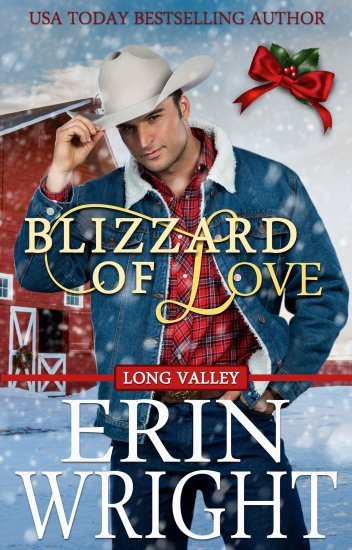 Blizzard of Love by Erin Wright