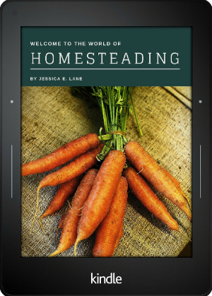 Welcome to The World of Homesteading