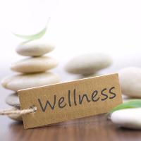 wellness healthy energised