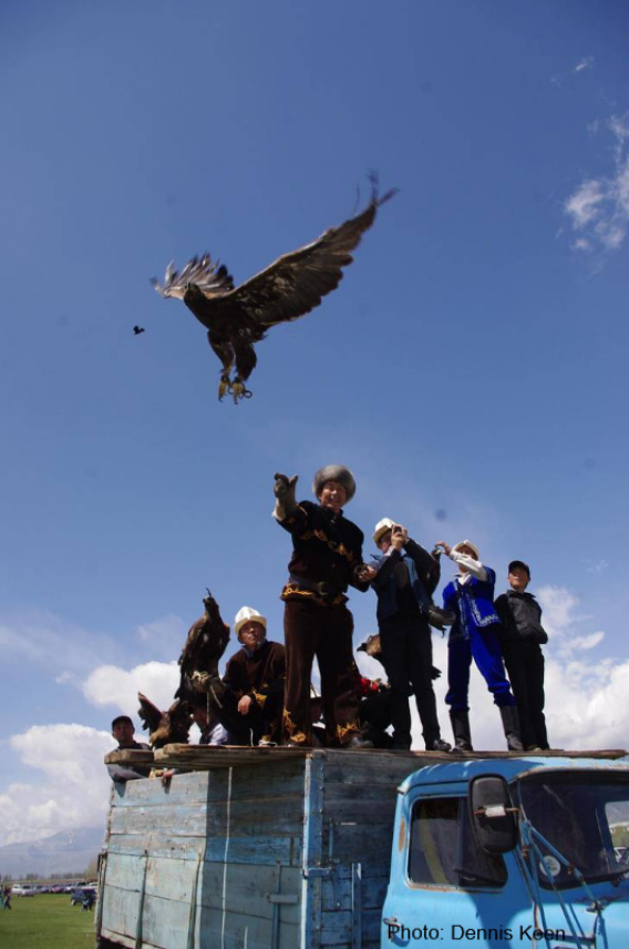 Enable images to see a photo of a Kyrgyz hunter slipping his eagle from the roof of a truck